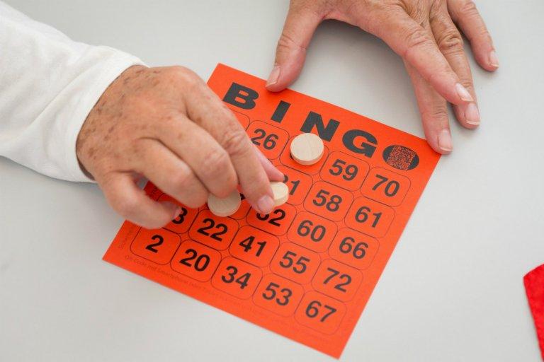 bingo-768x512.jpg
